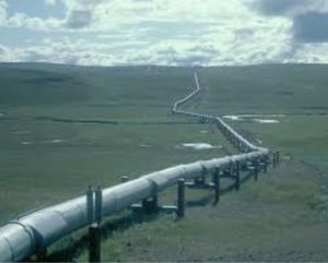 Oil pipeline inspectiona